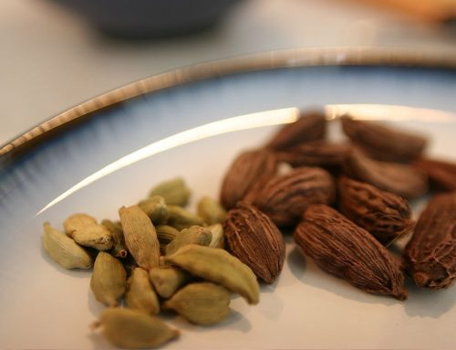 Cardamom heals the Mental Body