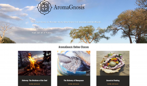 aromagnosis online classes page
